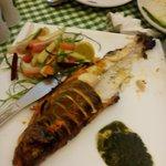 Tantoori trout fish