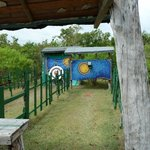 Archery + Riffle-Shooting Area