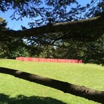 Sculpture meadow: Red Army.