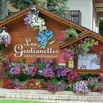 Les Gentianettes Hotel Foto