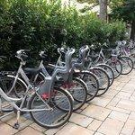 bici a disposzione clienti