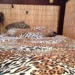 Questo è il letto in cui ho dormito io in questa settimana