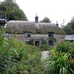 House with overgrown garden