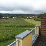 Seegasthof Foto