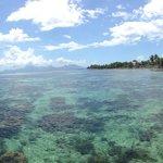 どこまでも続く遠浅の海。綺麗な熱帯魚がいっぱい泳いでいます。