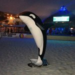 Killer Whale statue