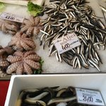 Fresh octopus and sardines