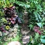 Secret Gardens like this are soulful! #loriharrisphotography