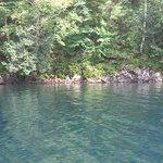 遊覧船からの然別湖
