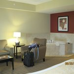 Billede af Comfort Suites West of the Ashley