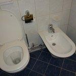 Bidet in toilet