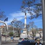 リスボン・ロシオ広場のジャカランダは5月下旬が見ごろ