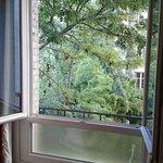 de la verdure dans PARIS : vue de la 302