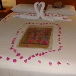 Room 123. Karim our cleaner was amazing with daily towel arrangements