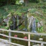 les jardins d'eau dans the Rock close