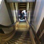 лестница для спортсменов