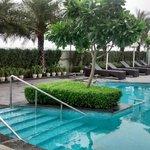 Alluring Pool