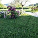 Giardino vista Assisi