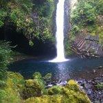 Cachoeira magnífica! Vale a pena ver sim!!!