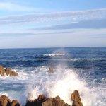 太平洋を望みます。