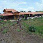 Borinquen Horseback Riding