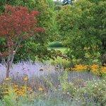 Arboretum 31 Aout 2014