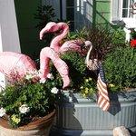Love the flamingos.