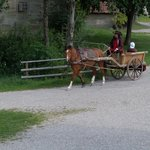 Hohenloher Freilandmuseum Foto