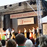 admire costumes, dancers, song and music