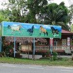 Taiping Equine Park