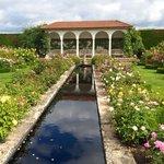 The long garden at David austins.