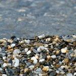 clear water beaches