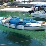 Skiathos harbour....how clear is the water !!