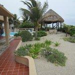 View of hammocks & pool