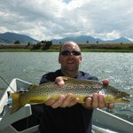 Brown Trout on the Yellowstone