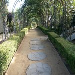 covered walk-ways throughtout the grounds