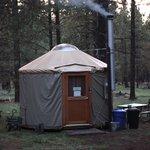 Honeysuckle Back Country Yurt