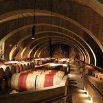 Autre vue des barils de vin