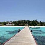 Island on arrival