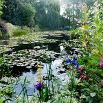 Monet's Lily Pond