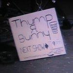 Thump R Bunny - Street Performer