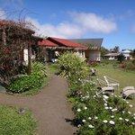 Las cabañas y el jardin