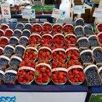 berries a plenty