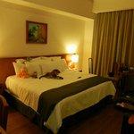 Foto de Meson Ejecutivo Hotel