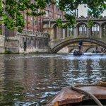 The wonderful Cambridge University