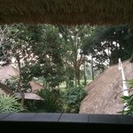 Paddy field, view from bedroom