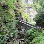 Sentry bridge