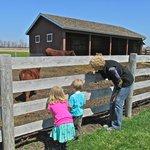 Kline Creek Farm