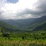 The lush green karsog valley