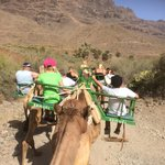 I karavane gennem Fatagadalen